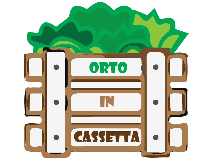 Orto in Cassetta